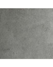 DUMAWALL+ GEPOLIERDE BETON LICHTGRIJS 37.5X65CM